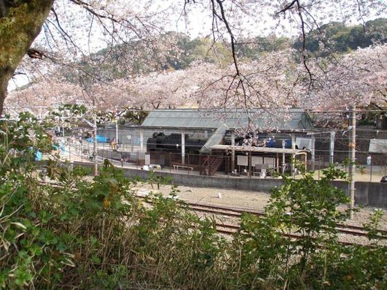 https://blog-001.west.edge.storage-yahoo.jp/res/blog-fe-4e/bazu55555/folder/109946/74/33492674/img_4_m?1522607361
