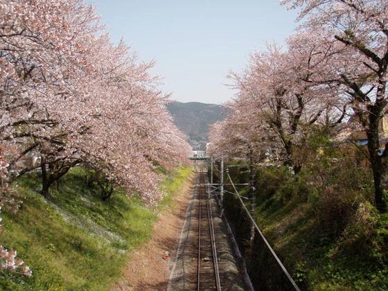 https://blog-001.west.edge.storage-yahoo.jp/res/blog-fe-4e/bazu55555/folder/109946/74/33492674/img_6_m?1522607361
