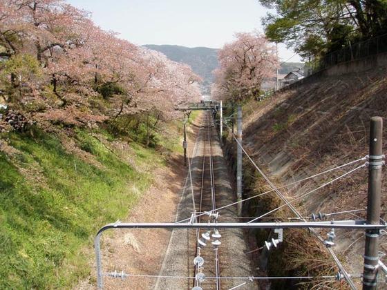 https://blog-001.west.edge.storage-yahoo.jp/res/blog-fe-4e/bazu55555/folder/109946/74/33492674/img_7_m?1522607361