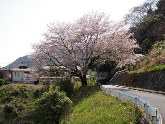 https://blog-001.west.edge.storage-yahoo.jp/res/blog-fe-4e/bazu55555/folder/109946/74/33492674/img_9_m?1522607361