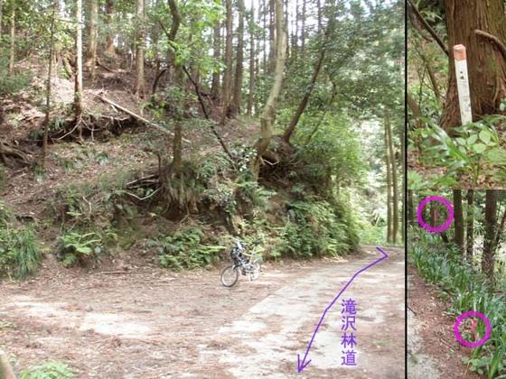 https://blog-001.west.edge.storage-yahoo.jp/res/blog-fe-4e/bazu55555/folder/109946/38/33525338/img_10_m?1525236560