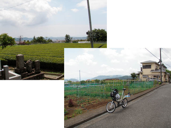 https://blog-001.west.edge.storage-yahoo.jp/res/blog-fe-4e/bazu55555/folder/109946/17/33568017/img_7_m?1528573894