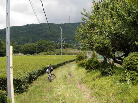 https://blog-001.west.edge.storage-yahoo.jp/res/blog-fe-4e/bazu55555/folder/109946/17/33568017/img_8_m?1528573894