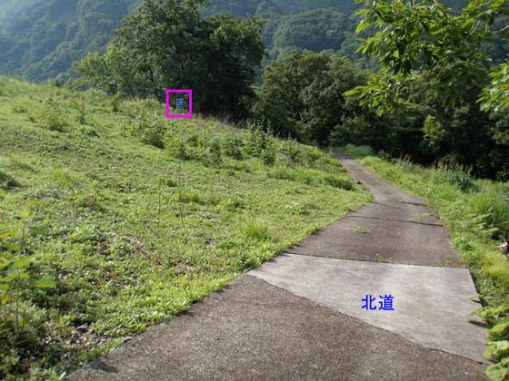 https://blog-001.west.edge.storage-yahoo.jp/res/blog-fe-4e/bazu55555/folder/109946/94/33576794/img_13_m?1529392087