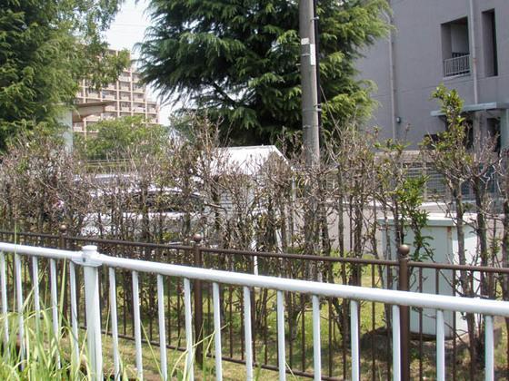 https://blog-001.west.edge.storage-yahoo.jp/res/blog-fe-4e/bazu55555/folder/109946/86/33606886/img_24_m?1532044279
