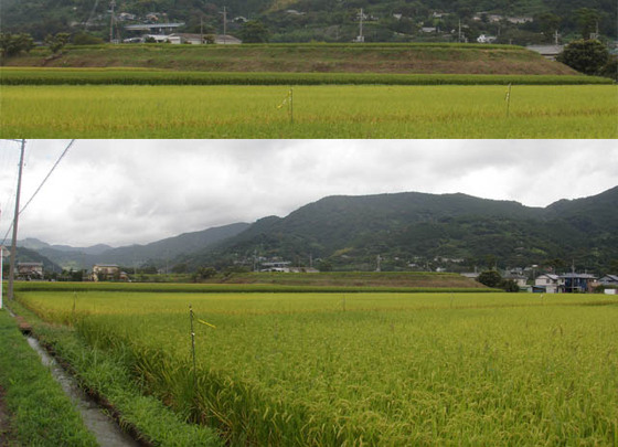 https://blog-001.west.edge.storage-yahoo.jp/res/blog-fe-4e/bazu55555/folder/1150243/46/33644046/img_4_m?1566000151
