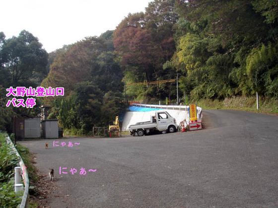 https://blog-001.west.edge.storage-yahoo.jp/res/blog-fe-4e/bazu55555/folder/109946/90/33705990/img_1_m?1540499541