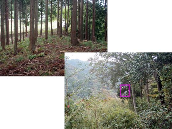 https://blog-001.west.edge.storage-yahoo.jp/res/blog-fe-4e/bazu55555/folder/109946/31/33706131/img_10_m?1540513043