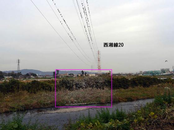 https://blog-001.west.edge.storage-yahoo.jp/res/blog-fe-4e/bazu55555/folder/1036370/32/33737132/img_4_m?1543263301