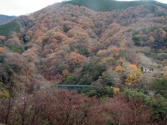 https://blog-001.west.edge.storage-yahoo.jp/res/blog-fe-4e/bazu55555/folder/109946/07/33749307/img_6_m?1544381281