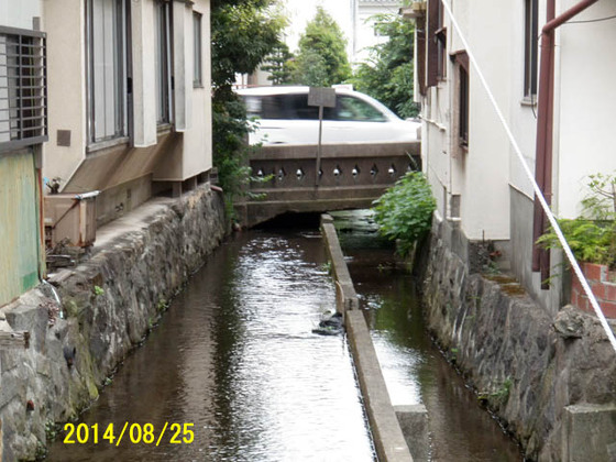 https://blog-001.west.edge.storage-yahoo.jp/res/blog-fe-4e/bazu55555/folder/109946/30/33841630/img_9_m?1553818615