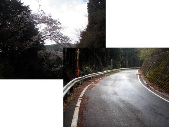 https://blog-001.west.edge.storage-yahoo.jp/res/blog-fe-4e/bazu55555/folder/109946/81/33843481/img_7_m?1554046814