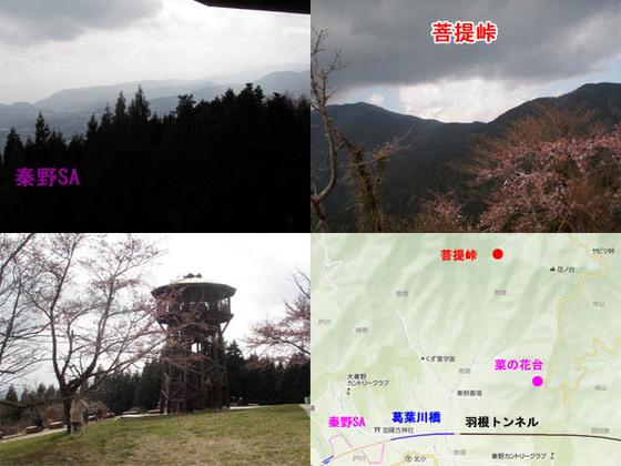 https://blog-001.west.edge.storage-yahoo.jp/res/blog-fe-4e/bazu55555/folder/109946/81/33843481/img_12_m?1554046814