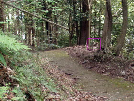 https://blog-001.west.edge.storage-yahoo.jp/res/blog-fe-4e/bazu55555/folder/109946/18/33864718/img_11_m?1556875916