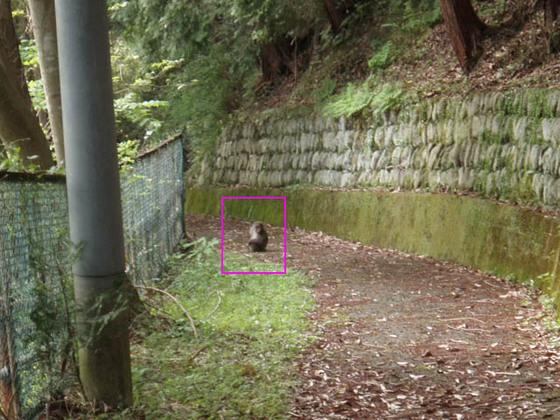 https://blog-001.west.edge.storage-yahoo.jp/res/blog-fe-4e/bazu55555/folder/109946/18/33864718/img_13_m?1556875916