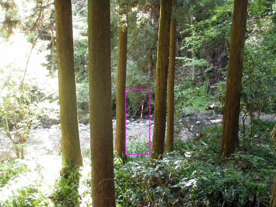 https://blog-001.west.edge.storage-yahoo.jp/res/blog-fe-4e/bazu55555/folder/109946/77/33866677/img_10_m?1557115585