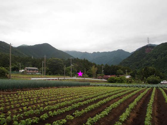 https://blog-001.west.edge.storage-yahoo.jp/res/blog-fe-4e/bazu55555/folder/109946/84/33888384/img_6_m?1560311854