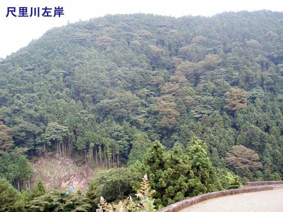 https://blog-001.west.edge.storage-yahoo.jp/res/blog-fe-4e/bazu55555/folder/1150243/45/33902945/img_2_m?1565987240