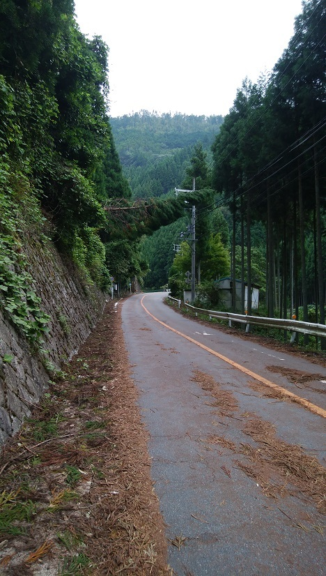 台風被害道路02