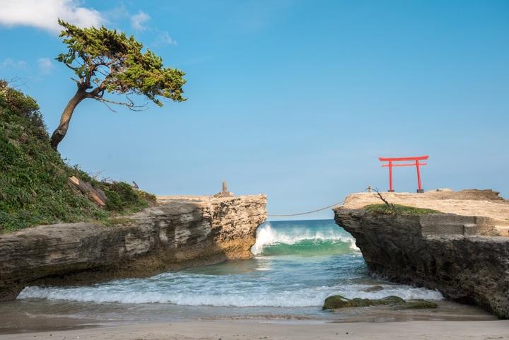 beach-landscape-sea-coast-tree-water-1374856-pxhere-com.jpg