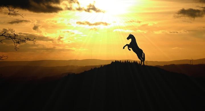 landscape-nature-horizon-silhouette-sky-sun-829312-pxhere-com.jpg