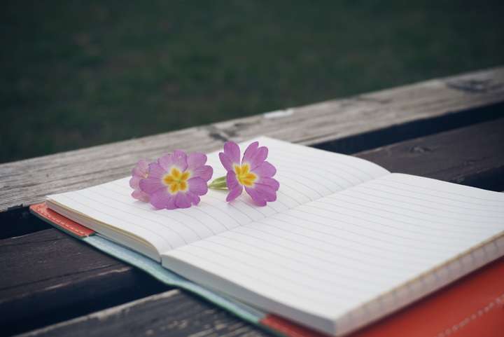 notebook-writing-nature-creative-plant-white-639037-pxhere-com.jpg