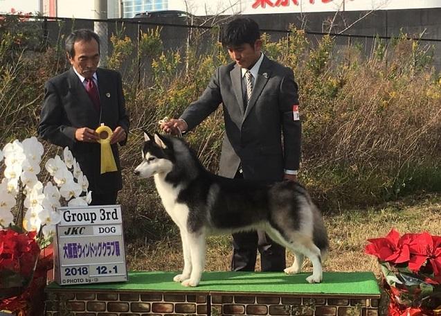 2018-12-01大阪西ウィンドックショー