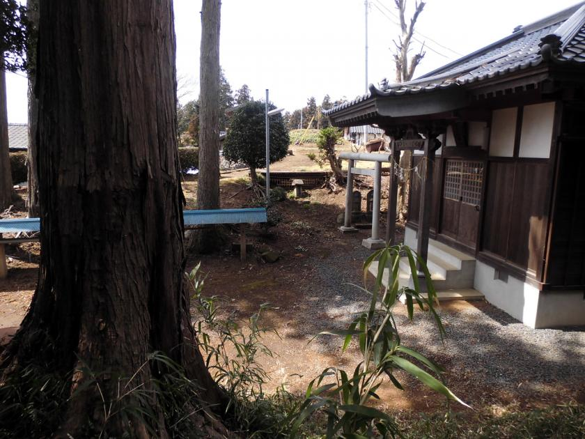 funatukayama21ftor.jpg