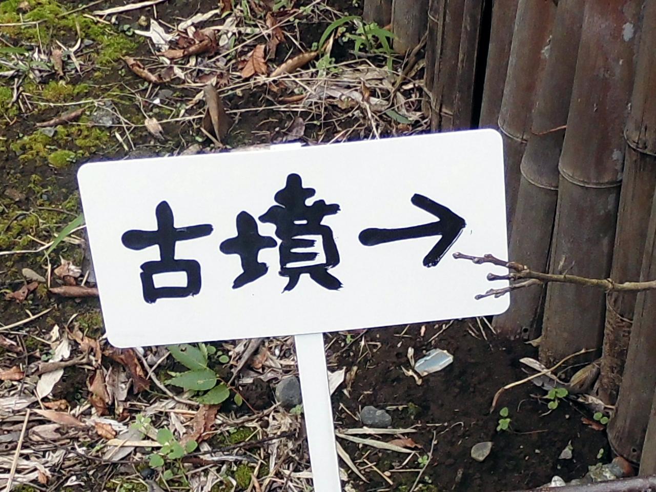 kamijukuyajirusi.jpg