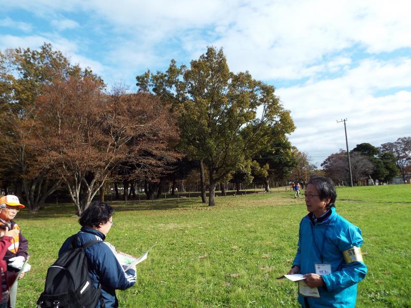 kasori181point.jpg