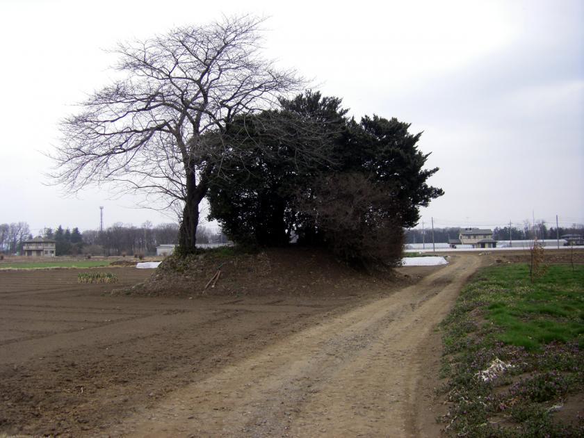kokubunatago3s.jpg