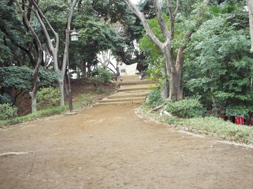 shibamaruyamaftor.jpg