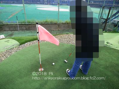 パターゴルフ 2018-11-2 (1)
