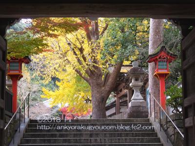 清荒神清澄寺 2018-11-22 (10)