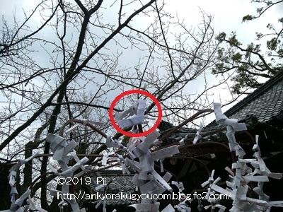 2019年 初詣 京都市 「護王神社」 2019-1-5 (4)