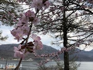 2019日光中禅寺湖