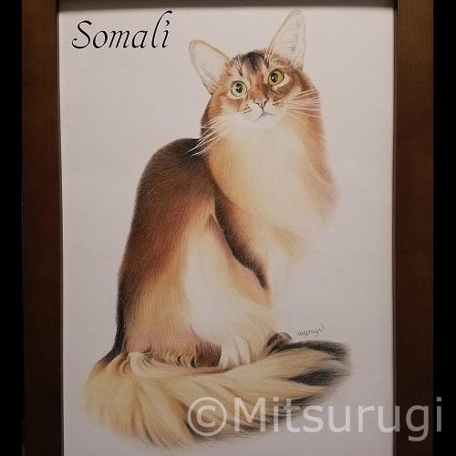 絵 イラスト ポートレート 肖像画 猫 ソマリ A3