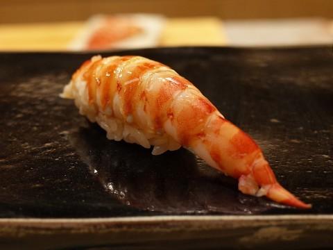 fuyusugita29.jpg