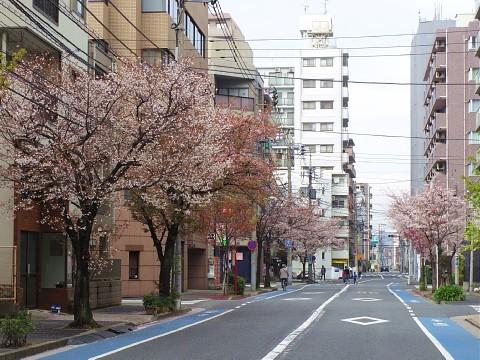 gyukatsu12.jpg