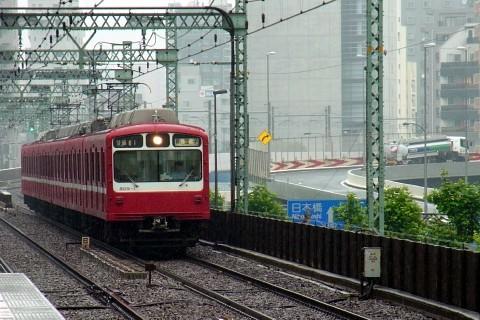 kaishungiku02.jpg