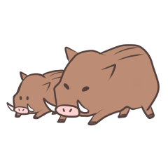 いのしし イノシシ 猪