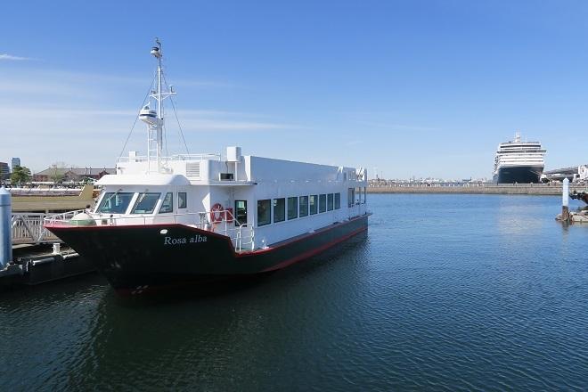 2019横浜港豪華客船来港1