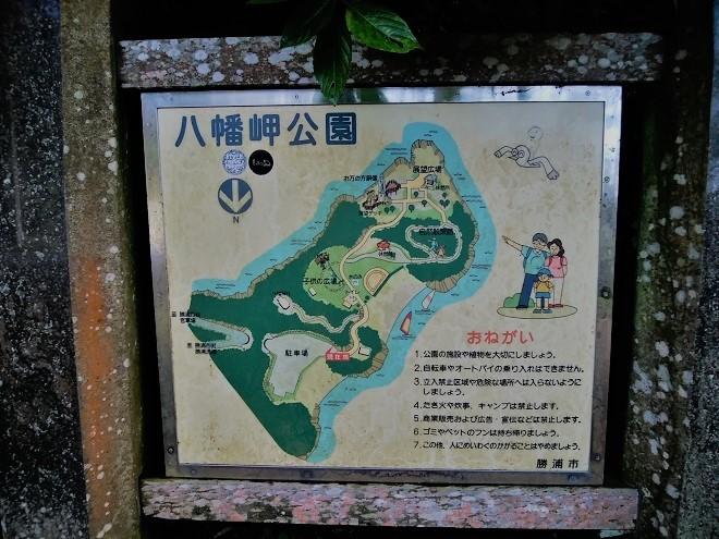 勝浦八幡岬公園でDX1