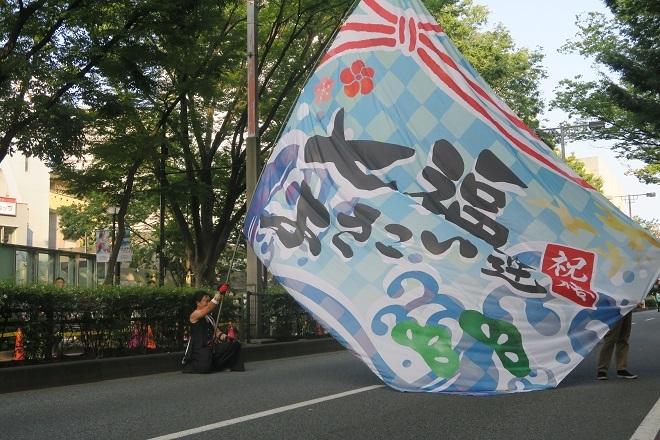 2019原宿スーパーよさこい(七福よさこい連)