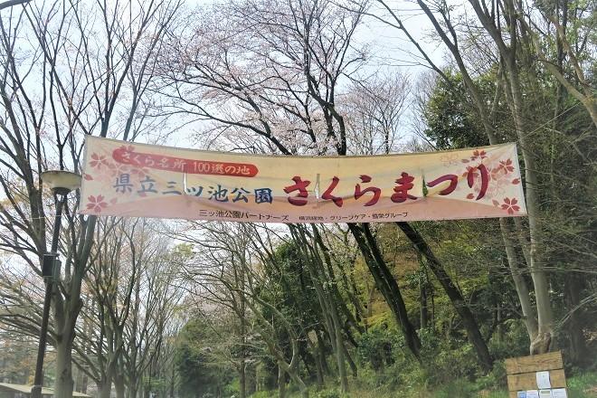 2019三ツ池公園の桜(1)