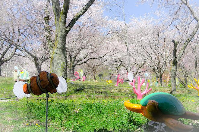 2019桜 さがみ湖プレジャーフォレストの桜(3)