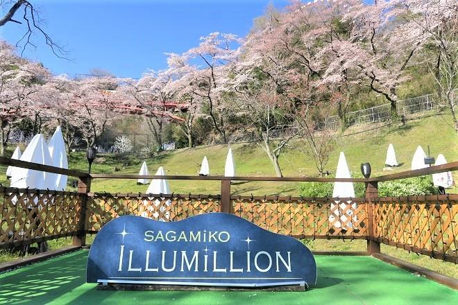2019桜 さがみ湖プレジャーフォレストの桜(10)