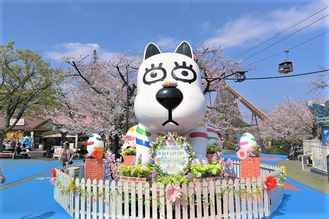 2019 よみうりランドの桜(1)