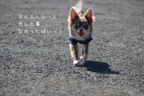 IMG_4074.jpg