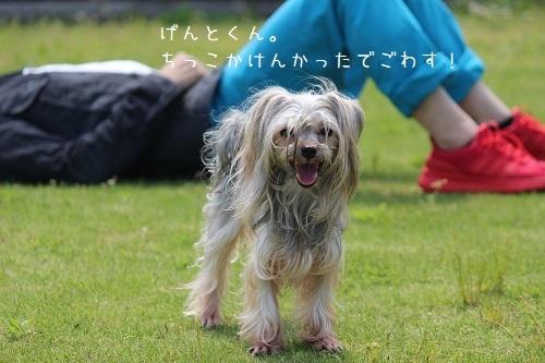 IMG_7712.jpg
